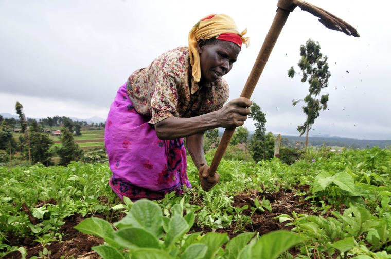 Climate & Nutrition